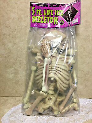 Poseable Full Life Size Human Skeleton 5ft .Halloween Decoration Party Prop New