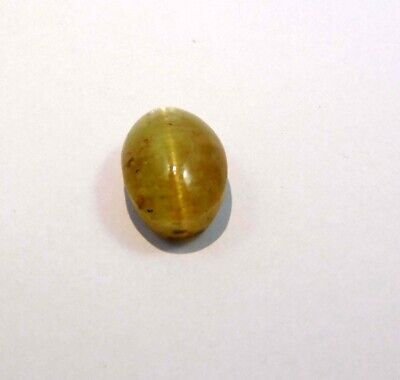 16 Cts. 100% Natural Cat's Eye Loose Cabochon Gemstone NG21547