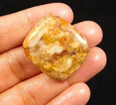 100% Natural Bird Eye Jasper Cabochon Loose Gemstone 37ct 26x23mm NG5672