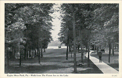 Eagles Mere Park, Pa. - Walk From The Forest Inn To The Lake - Old Postcard