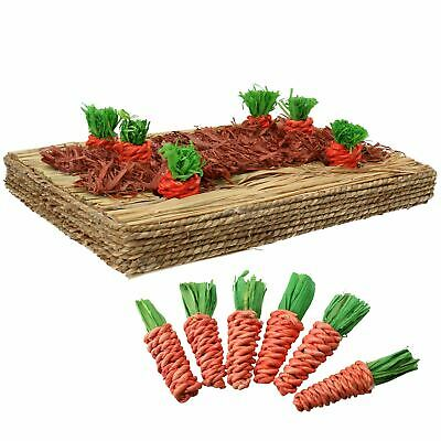 Small Animals Rabbit, Guinea Pigs Toy Carrot Play Patch & 12 Sisal Carrots