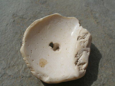~ Pre-Columbian ~ Tairona   ~  White Seashell Disc Bead ~  Fine Collectible ~