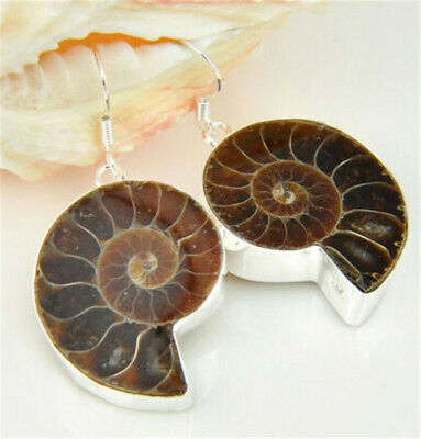Oval Cut 100% Real Genuine Ammonite Fossil Gemstone Silver Hook Dangle Earrings