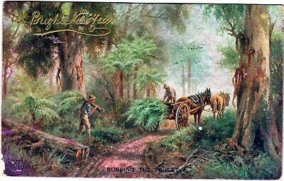AUSTRALIA MULTICOLOURED ROBBING THE FOREST SIGNED 1900's POSTCARD
