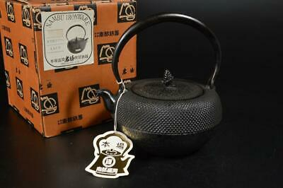 U6220: Japanese Iron Arare pattern TEA KETTLE Teapot Tetsubin, Iwachu made