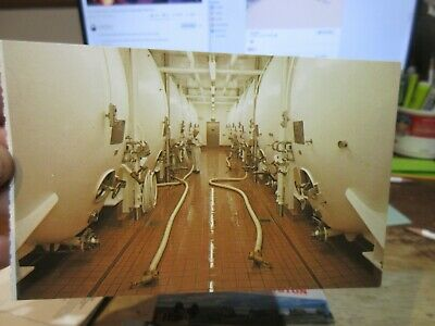 Vintage Old WASHINGTON STATE Postcard Olympia Beer Brewing Company Aging Cellar