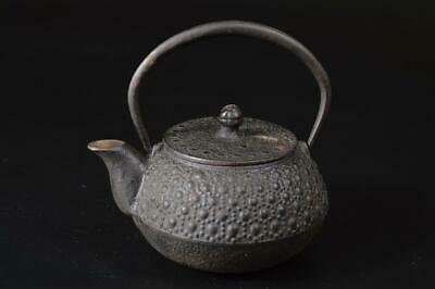 T7313: Japanese Iron Arare pattern SMALL TEA KETTLE Teapot Tetsubin Tea Ceremony
