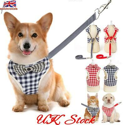 Pet Dog Harnesses Vest No Pull Adjustable Chihuahua Puppy Cat Harness Leash Sets