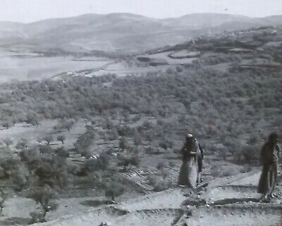Ancient City of Samaria and Olive Groves, 1903 Magic Lantern Glass Slide