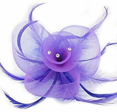 Diamante Crystal Net and Feather PURPLE Wedding Fascinator Hair Clip Brooch Pin