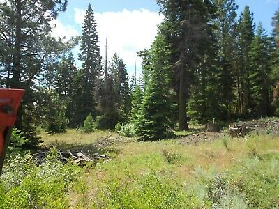 ON SALE! 1 Acre Treed Northern California Mountain Land! VIEWS! Low Price!