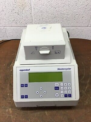 OEM Eppendorf 5333 Mastercycler PCR Thermal Cycler