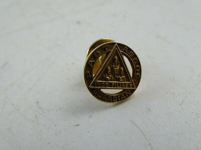 Vintage Job's Daughters 10K Solid Yellow Gold Lapel Pin Past Guardian 2.3 grams