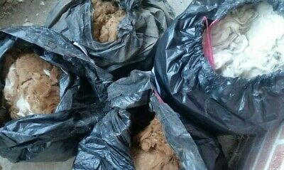 Alpaca Fleece Ungraded, Uncleaned, Brown & White Colour in Bags - Approx 14kg