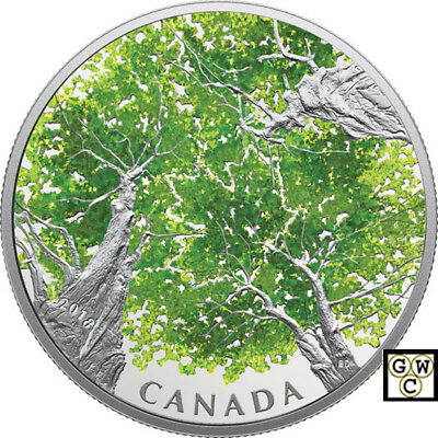 2018 'Canadian Canopy-Maple Leaf' Color Prf $30 Silver Coin 2oz .9999Fine(18520)