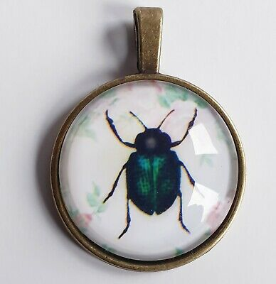 Beetle Pendant Blue Green Black w Bronze Backing Scarab Insect Crafts DIY