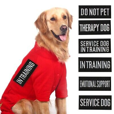2 Pcs New Patches For Harness Vest Service Dog In Training Security Therapy Dog