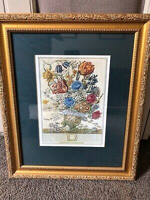 """Vintage Floral Print """"March"""" beautifully framed, highly detailed drawing"""