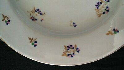 Antique Derby Plate c.1805 with cornflower sprig pattern. Extremely Rare.