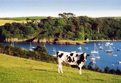 CORNWALL HOLIDAY COTTAGE available Thurs 21st - Thurs 28th November '19
