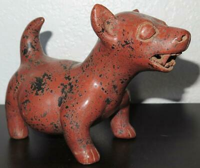 "Pre Columbian Small Colima Dog Effigy 6 1/8"" - Stunning Original Condition"