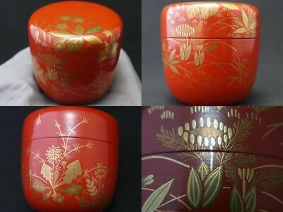 Japanese Lacquer Wooden Tea caddy Spring field Natsume Hounsai`s taste (822)