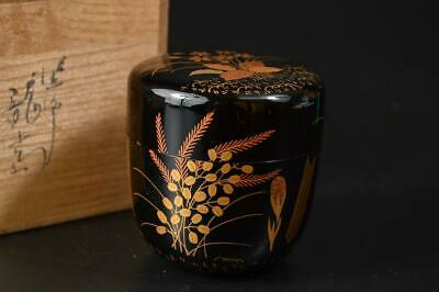 U1704: Japanese XF Wooden Lacquer ware TEA CADDY Natsume Container w/signed box