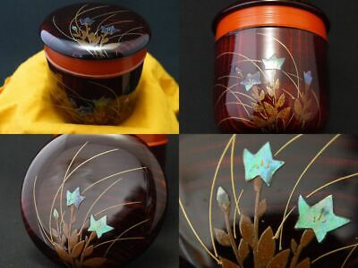 Japanese Lacquer Wooden Tea caddy BALLOON FLOWER makie JUKO-Natsume Unique  1108