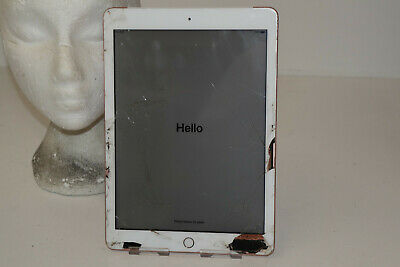 Apple Ipad 6Th Generation 32Gb Wifi + Cellular Gold Unlocked A1954 Boots Sl11