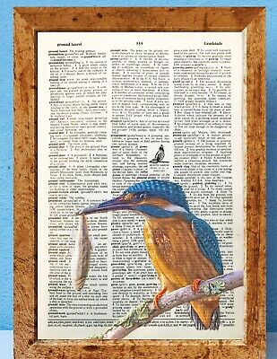 Vintage Antique Dictionary Book Page Art Print HUMMING BIRDS LOVE HEART GIFT
