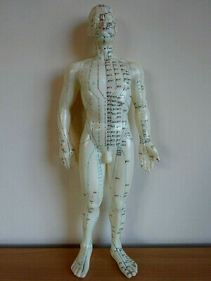 Vintage Chinese Acupuncture Medical Teaching Aid Rubber Male Human Doll 19""