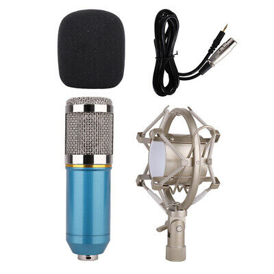 Hot Condenser Microphone Mic Kit Live Studio Sound Recording Mount Stand BM-800
