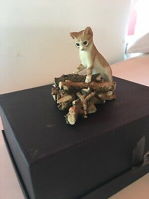 Sherratt /& Simpson collectable Siamese kitten licking paw 55037 BNIB