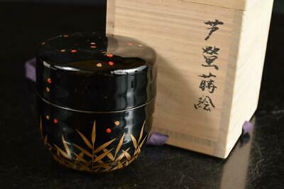 A4062: Japanese XF Wooden Lacquer ware TEA CADDY Natsume Container w/signed box