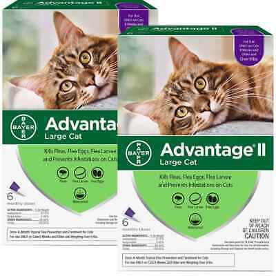 Advantage II For Cats Over 9 lbs, 6 Pack - EPA Approved / FREE Shipping!