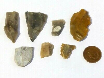 7 Original Flint Flakes Prehistoric Hand Thumb Working Tools #F1