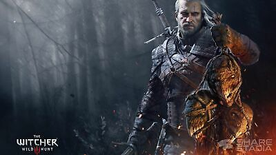 The Witcher 3 Wild Hunt + Sekiro: Shadows Die Twice + GIFT PC STEAM