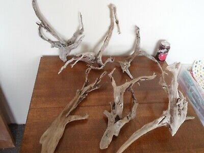 "Driftwood Pieces, x6 dark branching "" tree"" shapes. viv, craft or table centre"