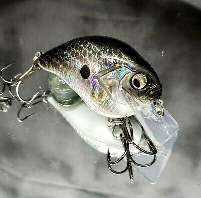 Loony DT10 Crankbait Custom Painted Fishing Lure By Chase/'n Bass