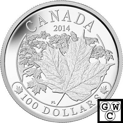 2014 'Majestic Maple Leafs' Proof 10oz $100 Silver Coin .9999 Fine (14047)