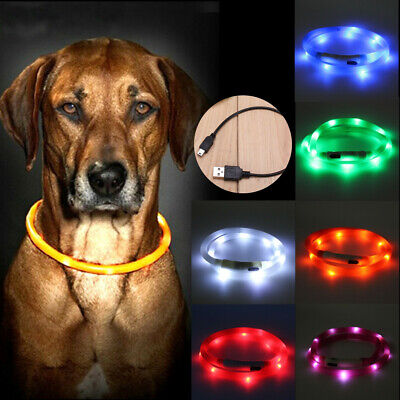Waterproof Rechargeable USB LED Flashing Light Band Belt Safety Pet Dog Collar