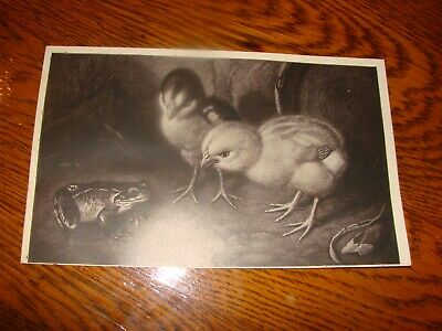 """Relief Print /""""Hungry Frog Dreams/"""" by Robert Fagg SFA Woodcut animals new Orig"""