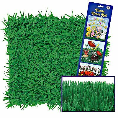 Green Tissue Paper Grass Mats Placemats Sports Alice In Wonderland Easter