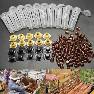 Complete queen rearing cup kit system bee beekeeping catcher box/&100 cell/'cupsRS