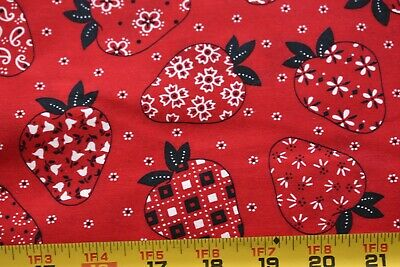 By 1/2 Yd, Vintage, Flowers & Paisley on Strawberries on Red Quilt Cotton, P416