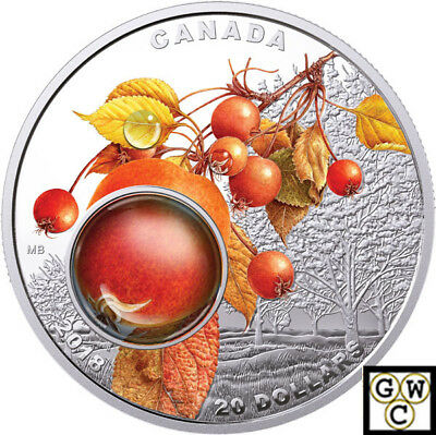 2018Morning Dew-Mother Nature's Magnification'Prf $20 1oz.9999Fine Silver(18251)
