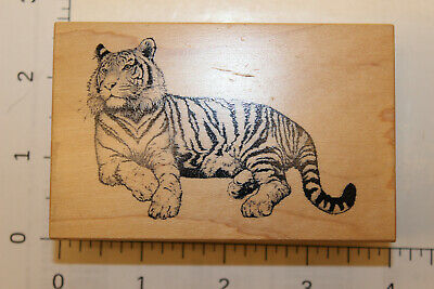 Panther Indochinese H4113 WM Tiger Rubber Stamp Bengal Big Carnivorous Cat