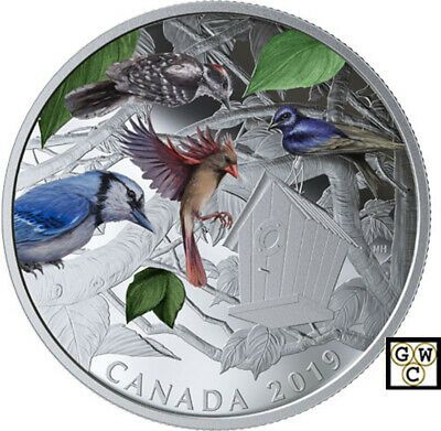 2019 'Birds in the Backyard' Proof $30 Silver Coin 2oz .9999 Fine (18760) (NT)