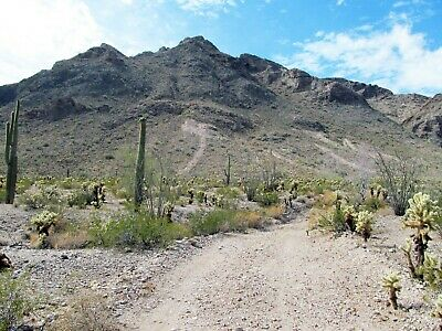 Arizona Gold Mine Mining Claim Harquahala Copper Silver Adit Shafts Tailings-AZ