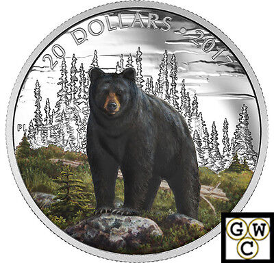 2017 'The Bold Black Bear' Color Proof $20 Silver Coin 1oz .9999 Fine(17847)OOAK